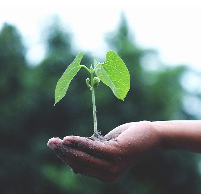 Comment démultiplier vos capacités de croissance patrimoniale ?
